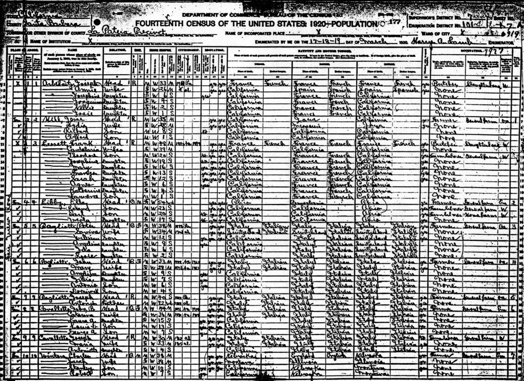 1920 Census 4